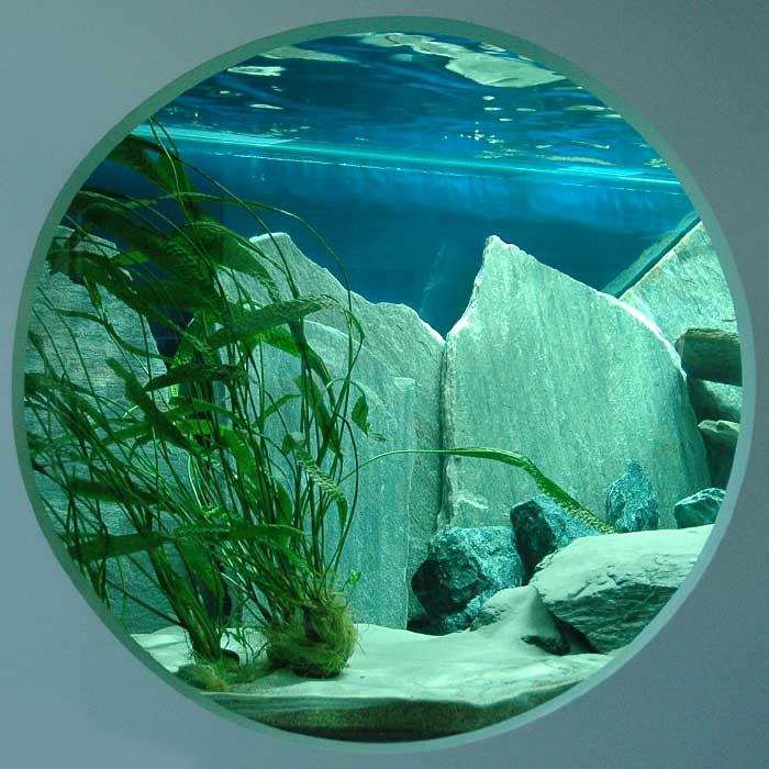 Aquarium de 6000 litres